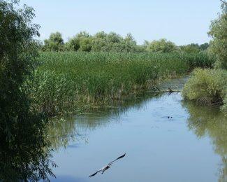 Peisaje Delta Dunarii