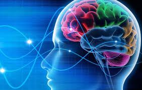 Valurile Alfa si Beta ale creierului